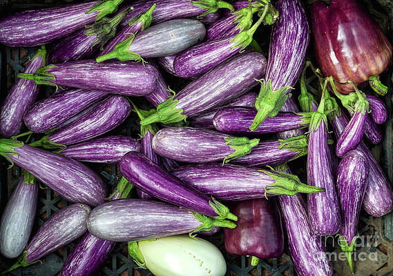 Fruit and Vegetable Market Prices South Africa