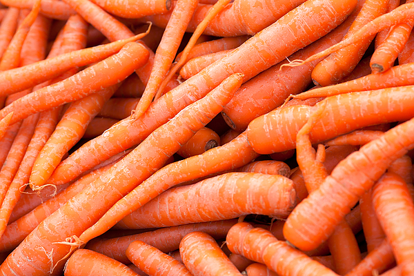 Carrot Fruit and Vegetable Market Prices South Africa