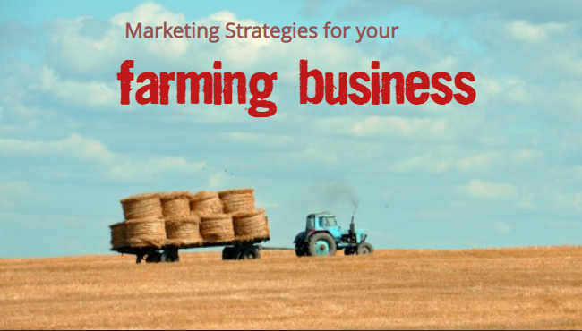 Strategy and Marketing Farming