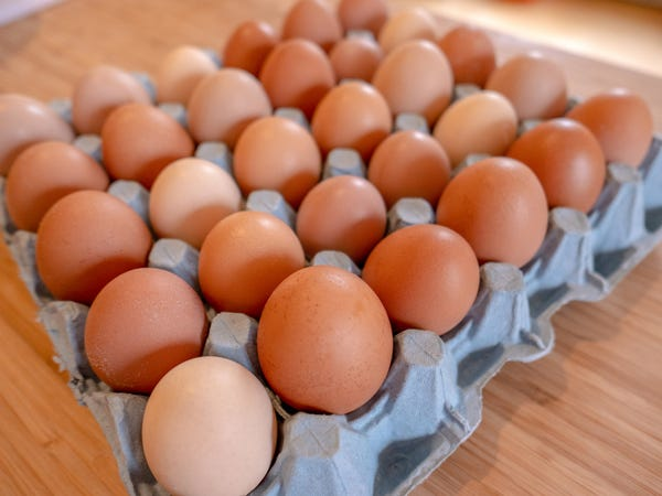 How much profit can you make with egg farming