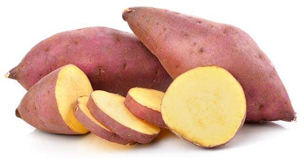 Sweet Potato Farming in SA