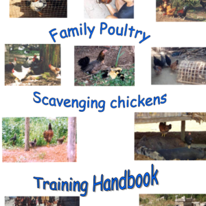 Chicken Training Handbook